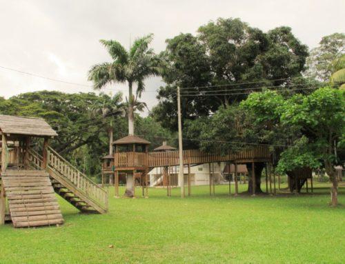 Macqueripe Bay